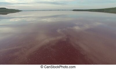 flying over a pink lake - salt lake pink separated by a...