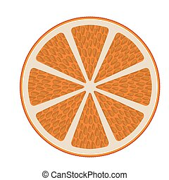 half orange isolated icon design, vector illustration...