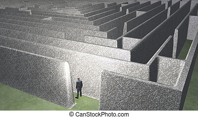 Man and maze