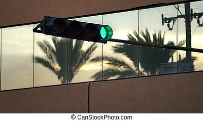 Green Traffic Light and Palm Tree - Static evening shot of a...