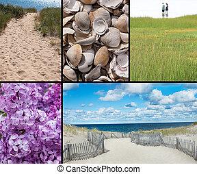 Cape Cod collage, medium rectangle