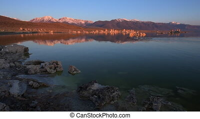 Geese swimming in Mono Lake at Sunrise - Sunrise at Mono...