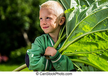 Little jouful boy with Rhubarb - A little preschool boy who...