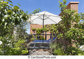 Roof terrace with apples hanging on a tree