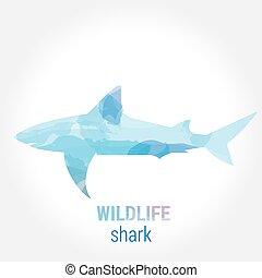 Wildlife banner - fish shark - Wildlife banner on white...