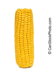 cooked corncob - a cooked corncob on a white background