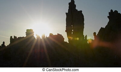 Mono Lake Wildlife at Sunrise - Birds nesting in Exposed...