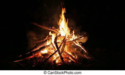 Charming bonfire flame blazing in the night