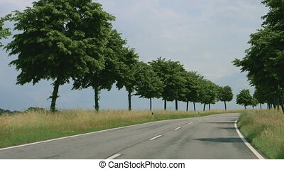 Road with trees in germany - Onboard camera, driving in...