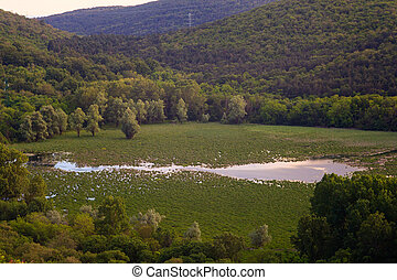 View of lake Doberdò - View of Lake Doberdo' sinkhole in the...
