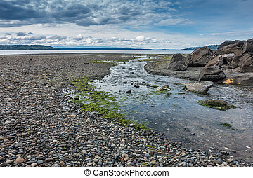 Puget Sound Landscape - A stream flows across the shore and...
