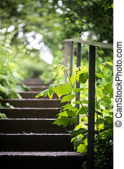old concrete stairs in booths - the old concrete stairs, in...