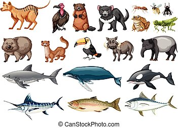 Set of different types of wild animals illustration