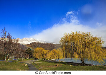 beautiful public park and little rainbow on mountain in...