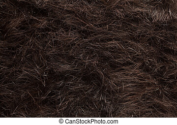 Hair cut off on the floor - Backdrop of human hair