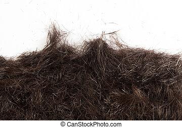 Hair cut off on the floor - Backdrop of human hair