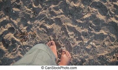 male feet walking along sandy beach