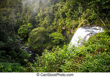 Lush Zillie Falls - The famous Zillie Falls waterfall in the...