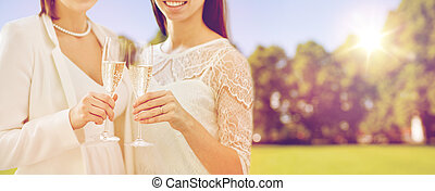 close up of lesbian couple with champagne glasses - people,...