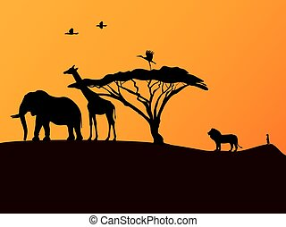 African sunset and animals - Vector illustration picture...