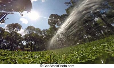 Watering the lawn with water