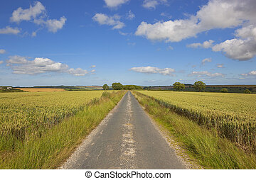 scenic yorkshire wolds road - a very small country road in...