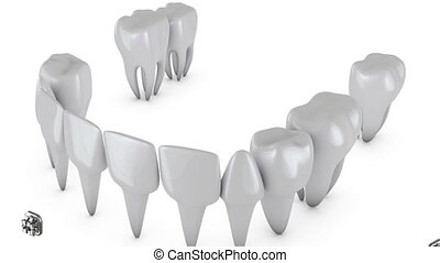 Animation dental brackets and tooth implant on a white...