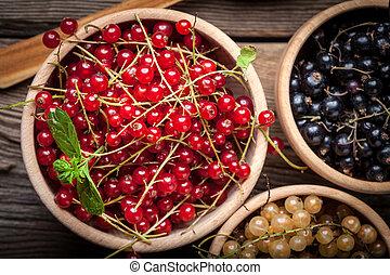 Redcurrant, blackcurrant, white currant fruit. - Redcurrant,...