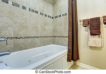 Bathroom interior with white shower bath tub