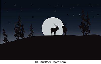 Silhouette of antelope and full moon