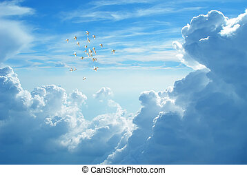 White doves flying in blue cloudy sky