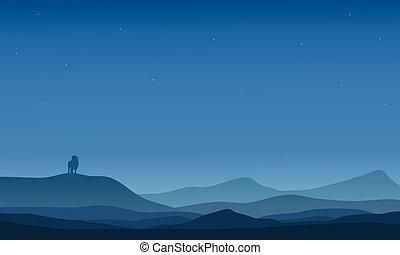 Silhouette of far lion in desert
