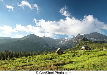 Tatra mountains - View from the valley to the high peaks of...