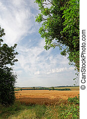 Lincolnshire Wolds Farmland,UK - View over the farmland of...