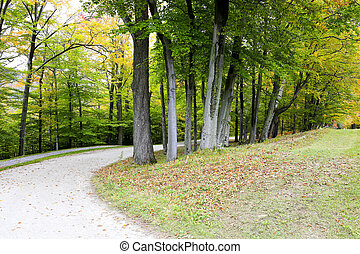 Road in fall, Stowe. Autumn landscape. Vermont, USA