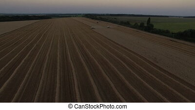 Harvesters tresh wheat aerial view