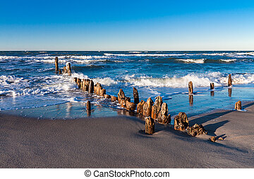 Groynes on shore of the Baltic Sea.