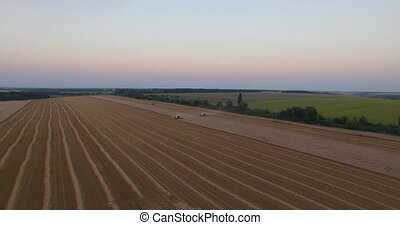 Harvesters tresh wheat aerial view.