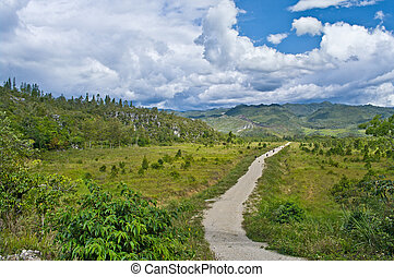 rural landscape in mountains, New Guinea