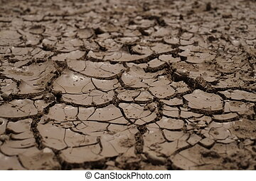 dry-parched-cracking earth