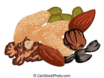 dried fruit isolated on a white background