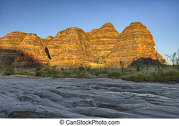 Beehives in Bungle Bungles National Park - Beehives and...