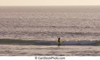 Stand up paddler silhouette at sunset. Concept about sport,...