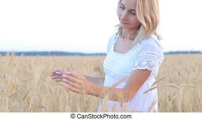 Female hand touching a golden wheat ear in the wheat field,...