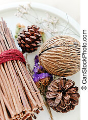 Pinecones and dried Plants, home decoration