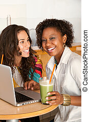 Women on a Laptop - Two women are working on a laptop while...