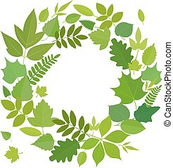 Wreath of green leaves