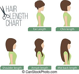 Hair length chart side view
