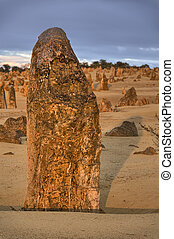 Pinnacle desert - Pinnacles in the desert of Nambung...