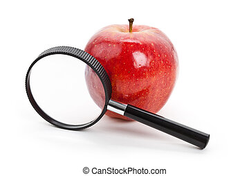 Red apple and Magnifier with white background
